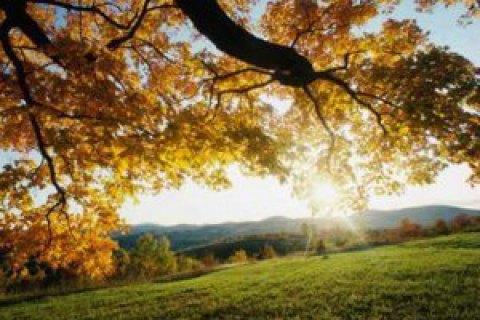 Начало октября принесет в столицу Российской Федерации иПодмосковье теплую погоду