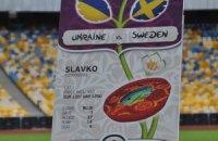 Однопартієць Качинського проти бойкоту Євро в Україні