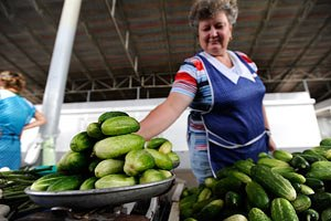 Перспектив для роста цен на овощи нет, - мнение