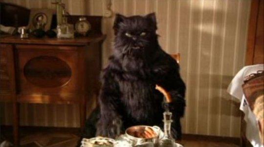 Маргарита кот фото