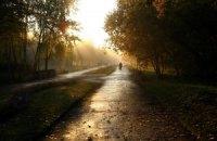 Завтра в Киеве холодно, возможен дождь