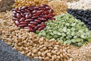 Украина запретила ввоз египетских бобов
