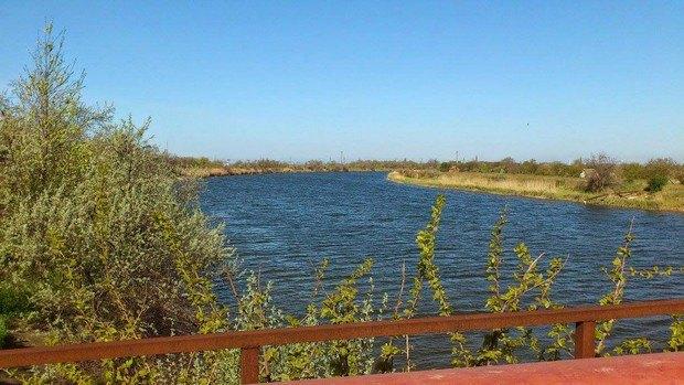 Северо-Крымский канал возле г. Армянск. Это уже Крым. Воды в канале столько же, как и обычно. Фотография 27 апреля 2014 года.