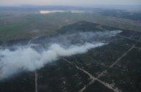 Лесной пожар в Херсонской области локализован