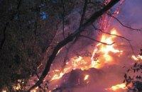 В Киеве горели склоны Днепра