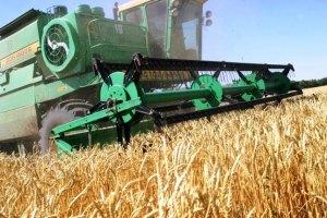 Шість областей зібрали вже більш ніж мільйон тонн зерна