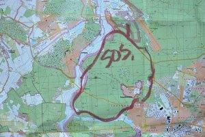 Беличанский лес получил природоохранный статус
