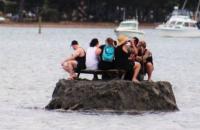 В Новой Зеландии компания насыпала остров, чтобы с алкоголем встретить Новый год