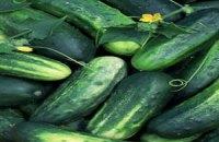 Зараженные кишечной инфекцией овощи обнаружены в Чехии, Австрии и Венгрии