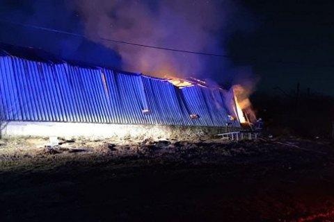 Во время пожара на ферме в Мукачево погибли 165 свиней