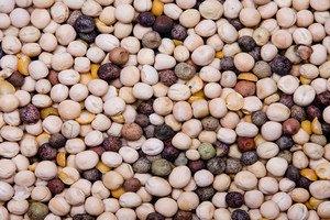 ЕС запретил импорт семян из Египта - именно оттуда пришла смертоносная кишечная палочка