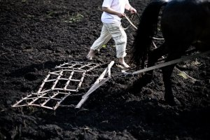 Іноземці отримали доступ до української землі
