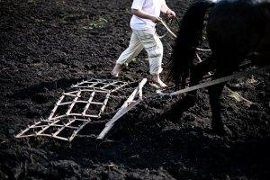 Иностранцы получили доступ к украинской земле