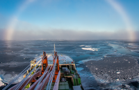 ООН оголосила десятиліття наук про океан