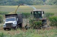 Чикагская биржа запустит торги фьючерсами на украинскую кукурузу