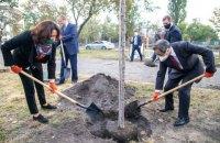В Днепровском районе Киева появилась самая длинная аллея сакур в Украине
