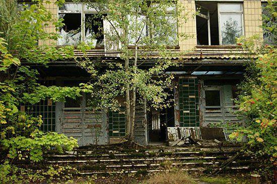 Дома разрушаются и полностью заростают растениями...