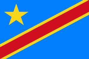 14 человек погибли при давке на музыкальном фестивале в ДР Конго