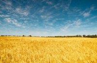 Asstrа: полный комплекс по организации жд перевозок вагонами-зерновозами