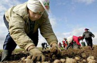 В Белоруссии повысят пенсии на 13,7%