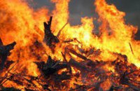 На Донетчине на пожаре погибло два человека