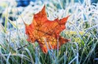 У понеділок Україні прогнозують заморозки, температура до +16