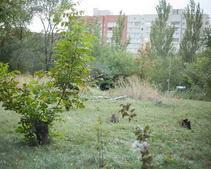 На ликвидацию оползней в одном из районов Днепропетровска выделят 100 млн грн