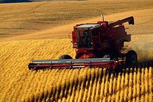 В Украине начали уборку зерновых