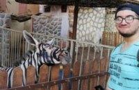 В Єгипті зоопарк пофарбував осла і видавав його за зебру