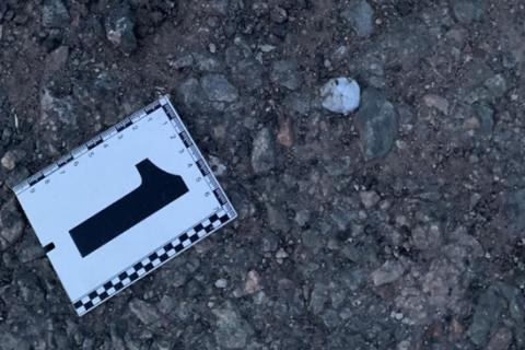 Шестеро пострадавших от взрыва детей нашли гранату на мусорнике