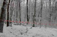 Во Львовской области в лесу мертвыми нашли двух мужчин