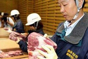 Японское правительство выкупит у фермеров всю радиоактивную говядину