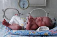 Китайские власти могут снять ограничение рождаемости