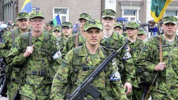 Кайтселийт - сформовані на добровільній основі війська територіальної оборони Єстонії