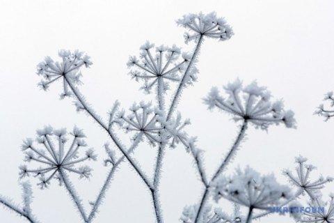 В Киеве так и не наступила метеорологическая зима