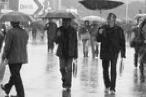 Завтра в Киеве ожидается дождь