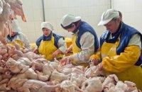 ЕС без предупреждения приостановил импорт курятины из Украины