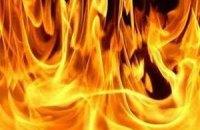 В Краснодаре на Масленицу сожгли книги Генри Миллера