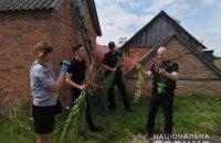 У Київській області вилучили понад 200 кущів конопель і маку