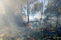 У Києві загорілося звалище на Русанівських садах