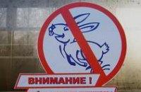 Сотрудники ПЖД за месяц изъяли 172 «липовых» проездных документа