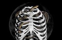 «Голова змія»: Несіть новий рай, цей зламався
