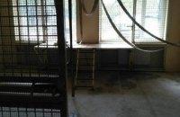 Мавпи відірвали вухо і пальці співробітнику зоопарку в Харківській області