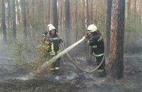 В Киеве возле Троещины загорелся лес