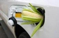ЕС собирается сократить использование биотоплива для автомобилей