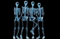 Ученые научились выращивать кости из рыбьей чешуи