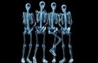 Учені навчилися вирощувати кістки з риб'ячої луски