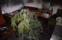 В Николаеве на пожаре погибла молодая супружеская пара