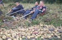 В Україні можна буде збирати два врожаї на рік через потепління