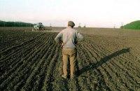 Кабмин внес в Раду законопроект о передаче земли в собственность фермеров